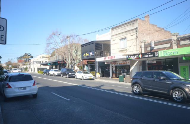 141 Marion Street, LEICHHARDT NSW, 2040