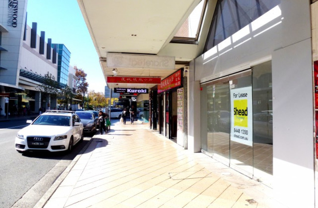 304 Victoria Avenue, CHATSWOOD NSW, 2067