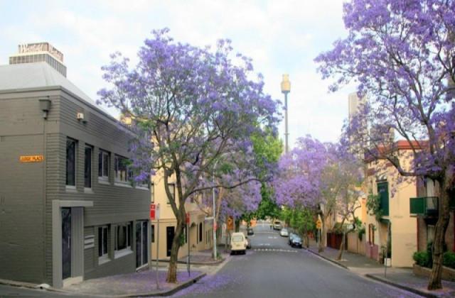 177 Cathedral Street, WOOLLOOMOOLOO NSW, 2011