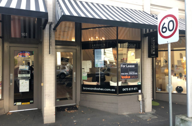 161a Williams Road, SOUTH YARRA VIC, 3141