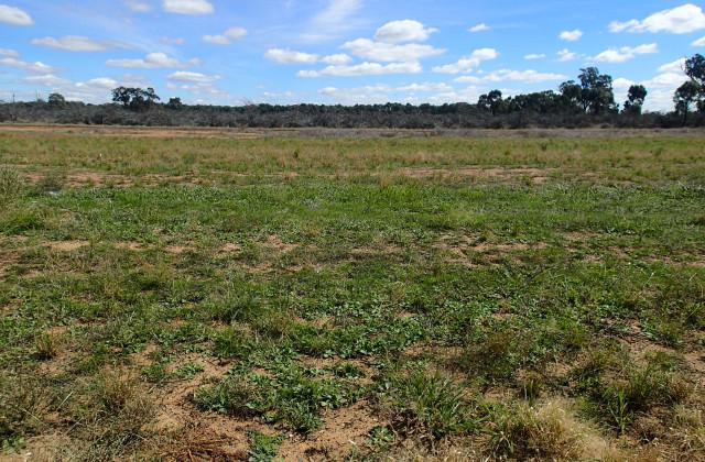 Lot/40 Defence Drive, MULWALA NSW, 2647
